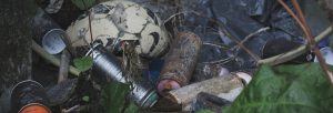 Clear Garden Waste in Binfield